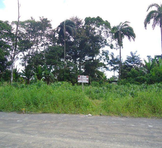 T. 800 m2 Sr. Maldonado 2