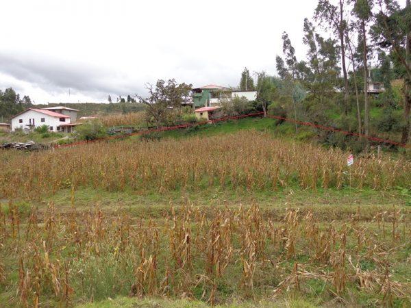 san-Vicente-Nulti-600x450