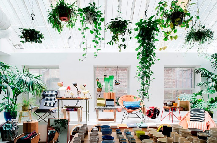 Ideas creativas para decorar tu hogar con plantas bienes - Ideas creativas para decorar ...