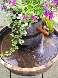 DIY-Containers-Garden-Pond-6