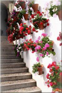 Decorar-Jardines-y-terrazas-con-mucho-color-4-580x869
