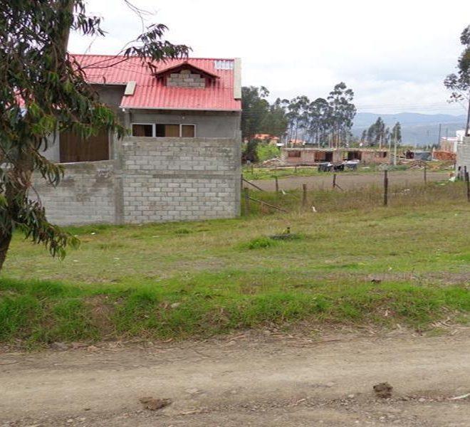 pumayungaP2