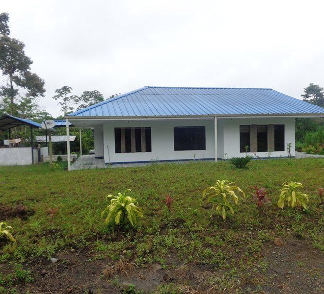 Guamboya2